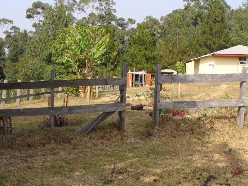 garden, wood shed, guest house